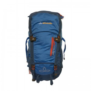 Pinguin Walker 50 Pinguin, blue 9 B