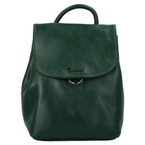 Módní dámský batoh David Jones Jennas – zelená